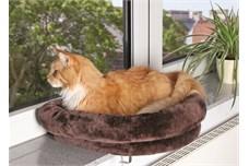 Katte kan også have allergi (foto petworld.dk)